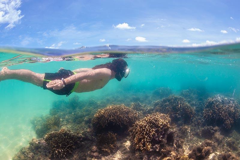 Mergulho com águas cristalinas com detalhes dos corais
