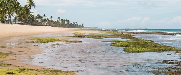 Praias com piscinas naturais: tábua de marés