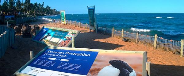 Feriados em 2019: Praia do Forte