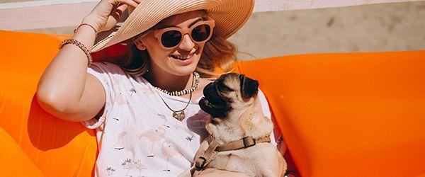 Viajar com animais de estimação: cuidados e dicas
