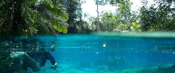 Bonito e Pantanal em uma mesma viagem