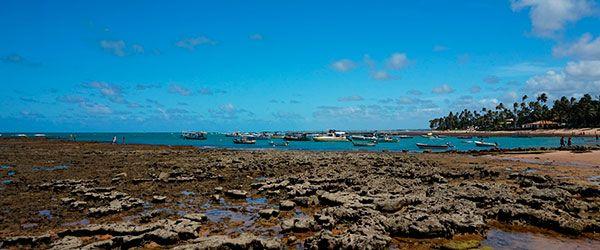 Costa dos Coqueiros - Praia do Lord