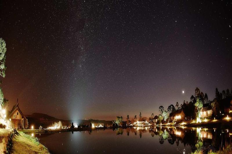 noite-estrelada-conexao-natureza
