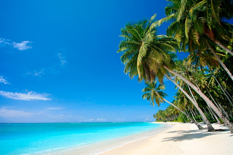 praia calma com areia clara