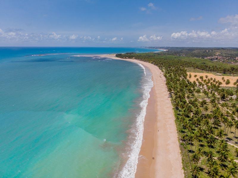 Vista aérea faixa praia coqueirais