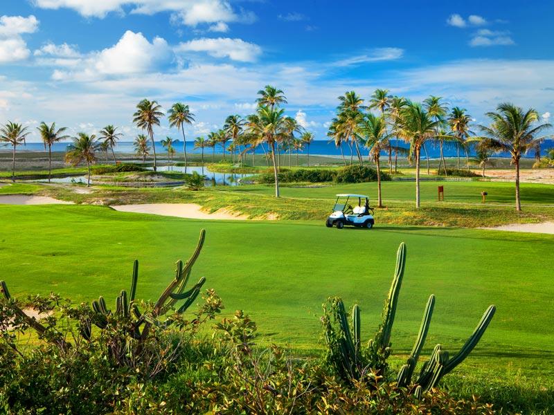 Campo Golf nível internacional